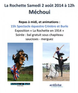 bande-Affiche-Mechoui-2014-th.jpg